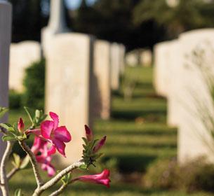 assistência funeral